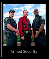 Armed Security Services